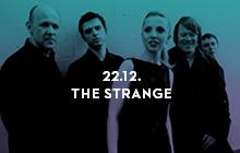 strange-web-mali2